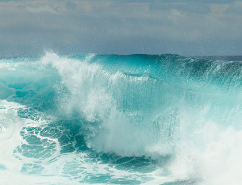 Oceans provide 70% of our oxygen