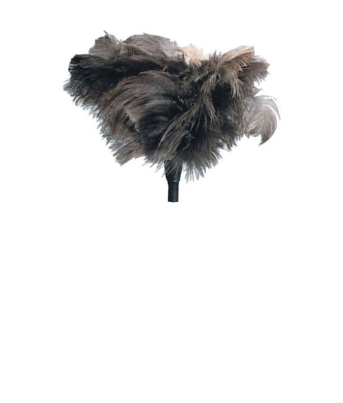 Image Ostrich Feather Duster